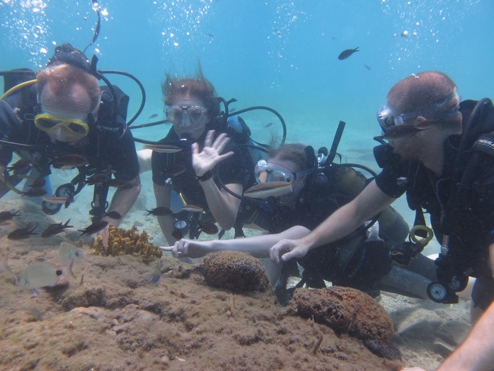træk vejret under vand